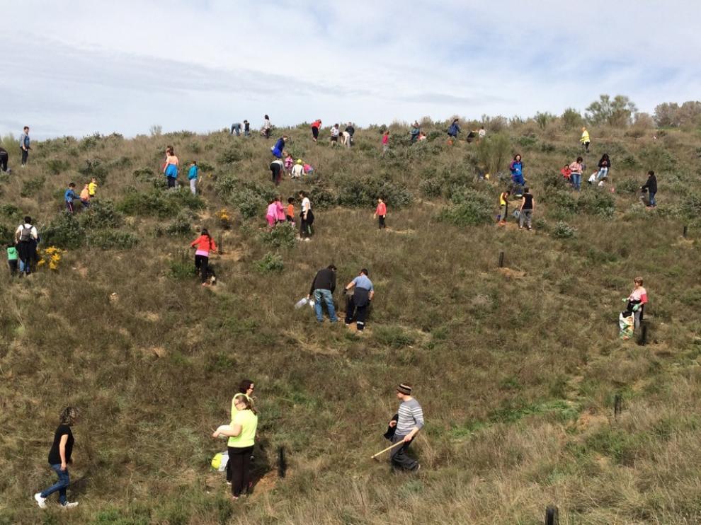 Los voluntarios trabajan cerca de la ermita.