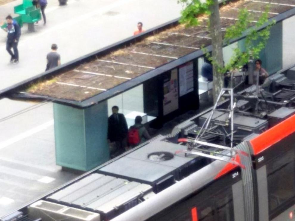 Una avería en el tranvía interrumpe el servicio entre Romareda y la Avenida de la Academia