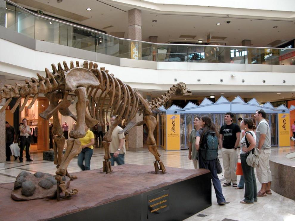 Un esqueleto de titanosaurio.