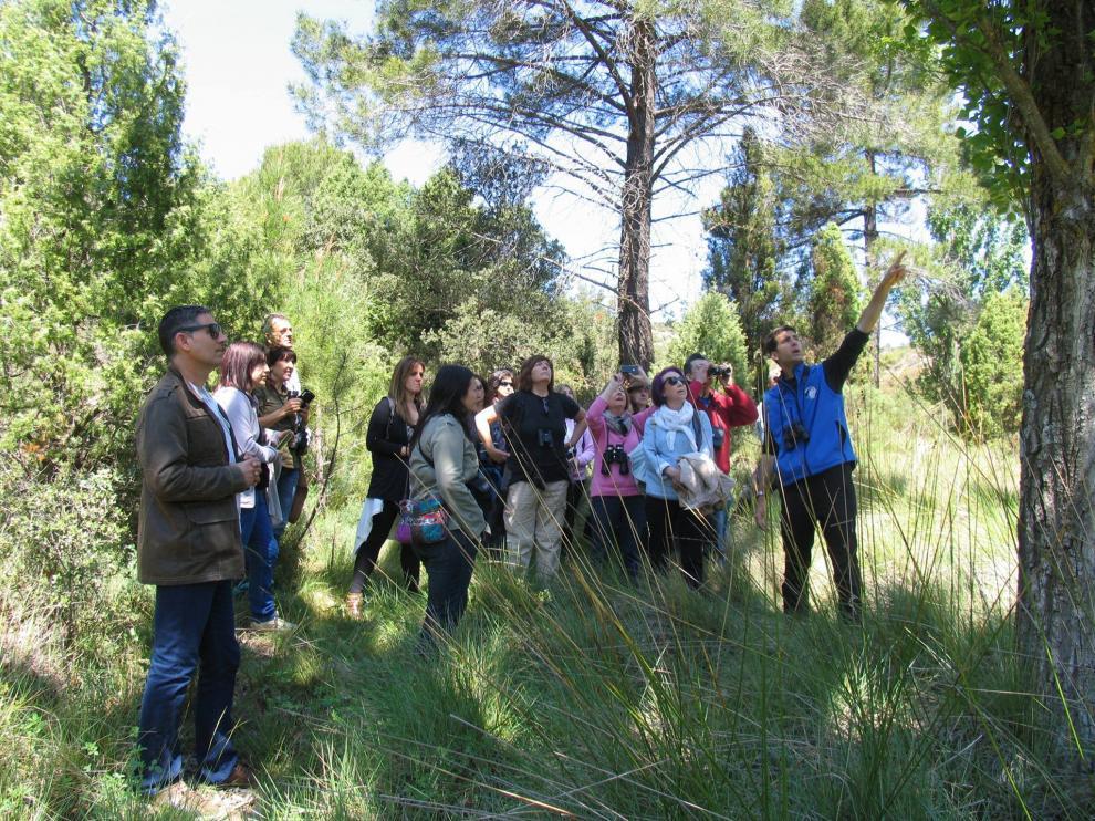 Un especialista en ornitología explica conceptos sobre el terreno.