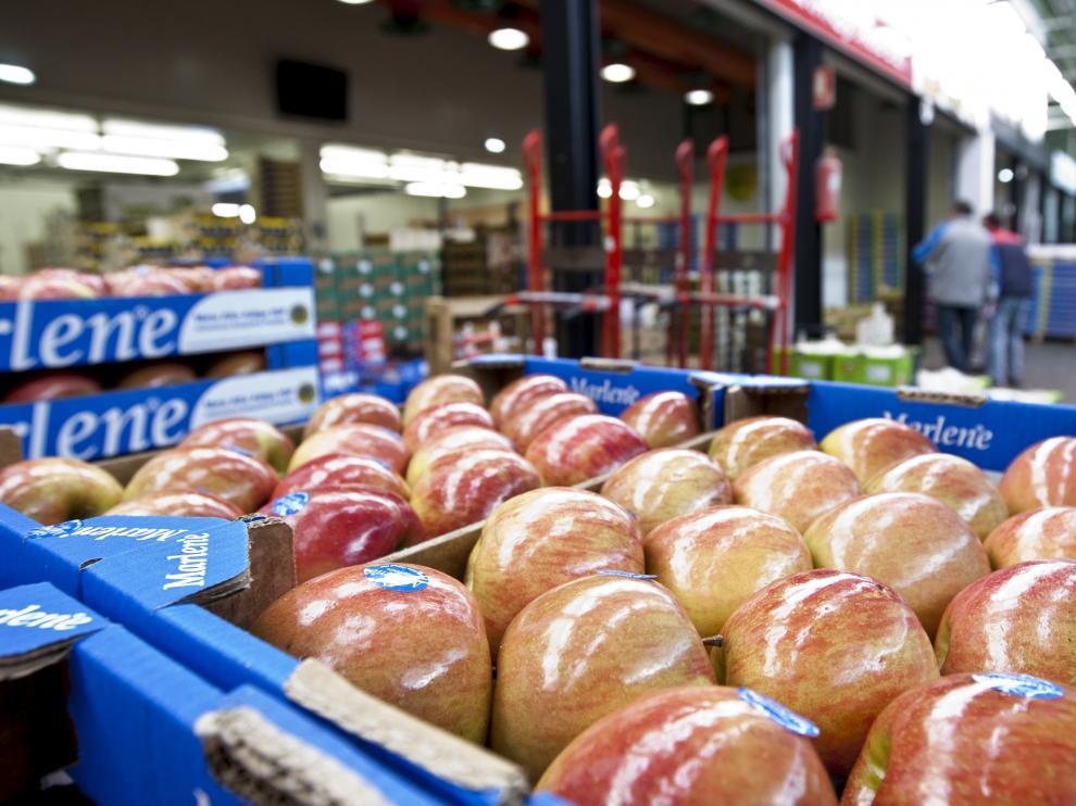 Cajas de manzanas preparadas para su distribución en Mercazaragoza.
