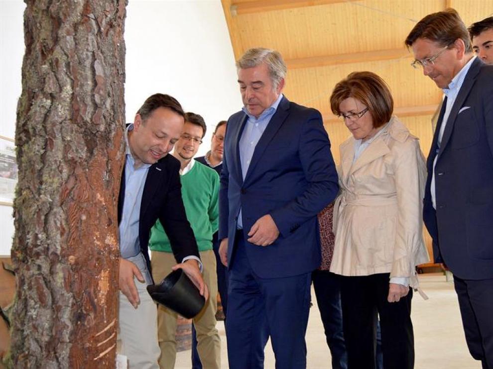El portavoz del Partido Popular en el Senado, Jose Manuel Barreiro (2i) escucha las explicaciones junto a la presidenta del PP de Soria, Marimar Angulo (2d) durante su visita a las instalaciones de la empresa Resinas Naturales