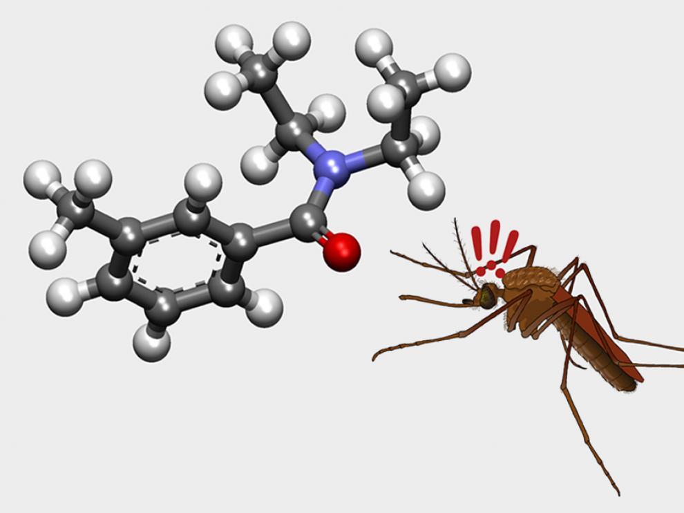 ¿Cuál es esta molécula?