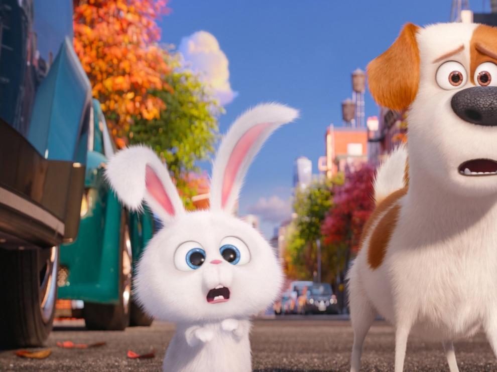 Fotograma de la película 'Mascotas'.
