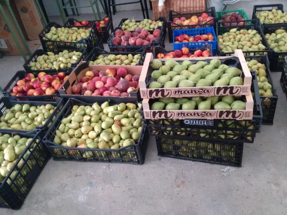 La Red de Solidaridad Popular de Zaragoza reparte 700 kilos de frutas y hortalizas.