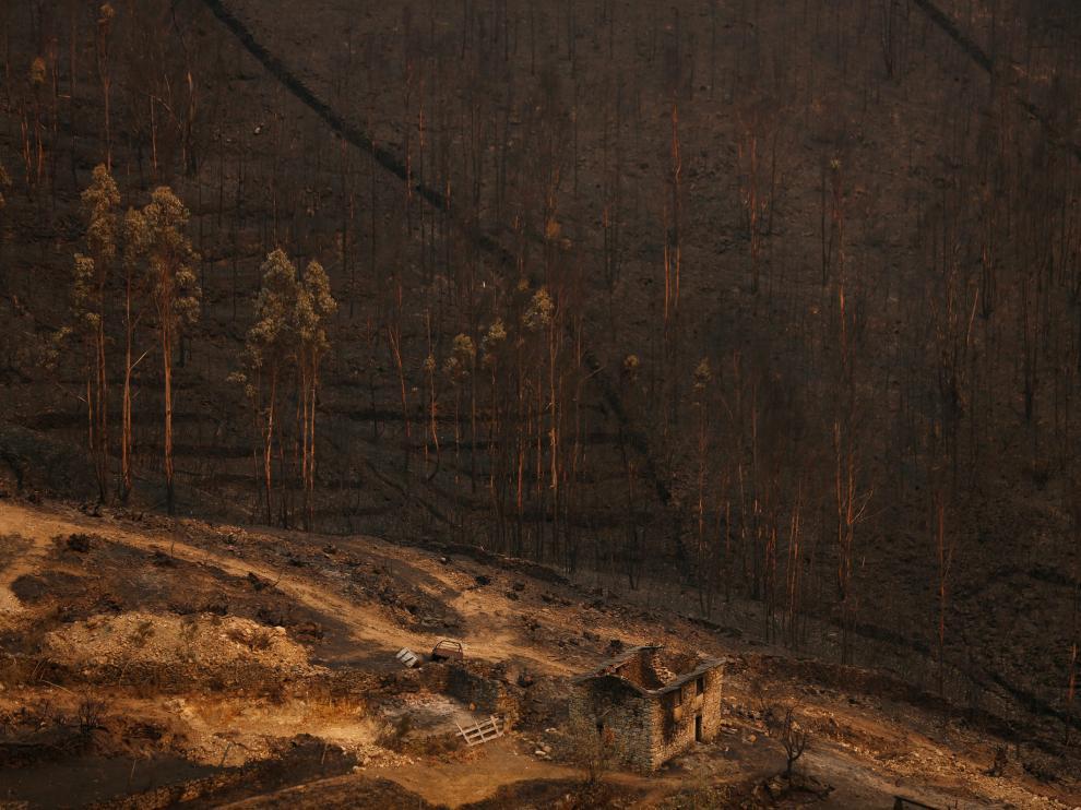 Portugal se vio afectado la semana pasada por una oleada de incendios que castigó especialmente el norte