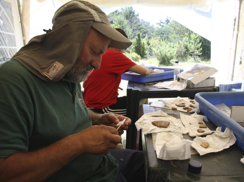 El profesor Manuel Rojo observa uno de los hallazgos.