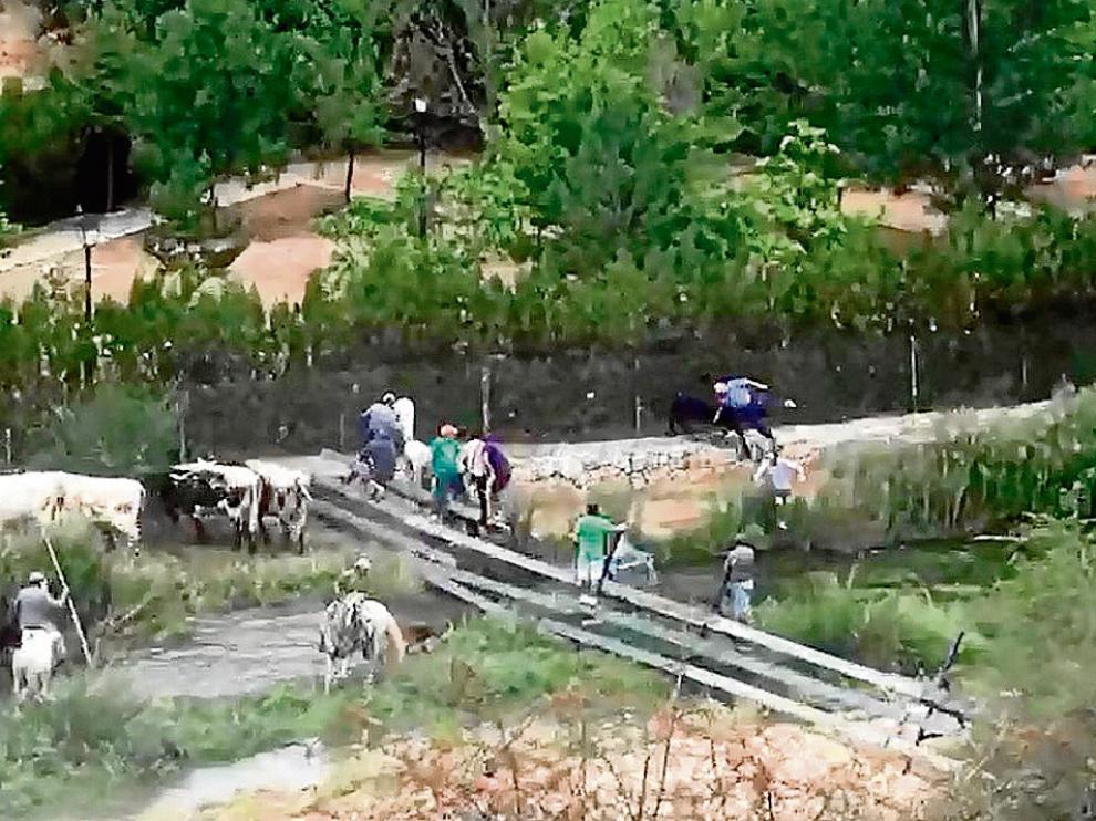 La imagen -capturada de un vídeo- muestra en un círculo el momento en que el toro, tras salirse del recorrido del encierro, embiste al anciano que presenciaba el espectáculo.