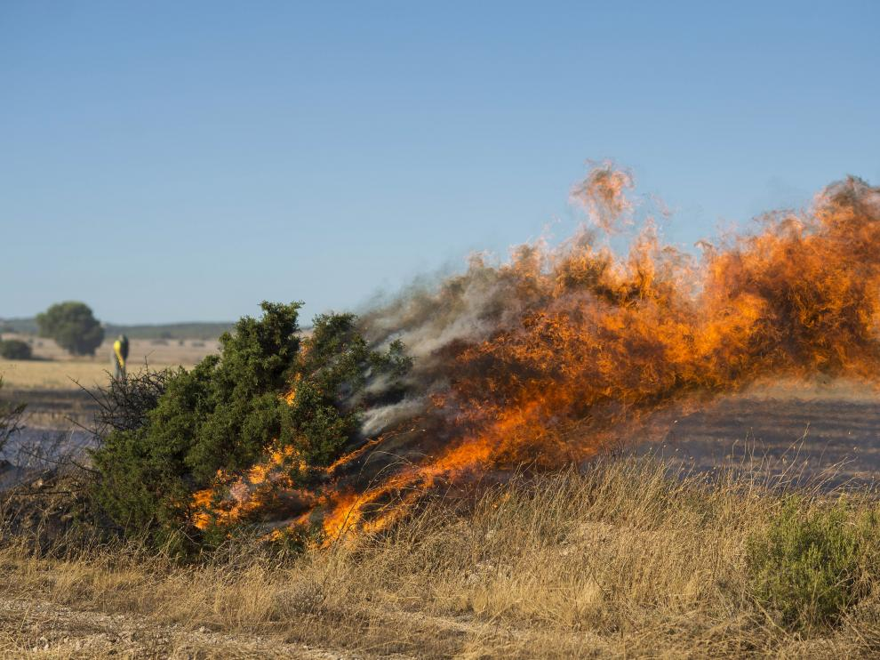 El incendio declarado en San Gregorio se extendió a los montes de Zuera.