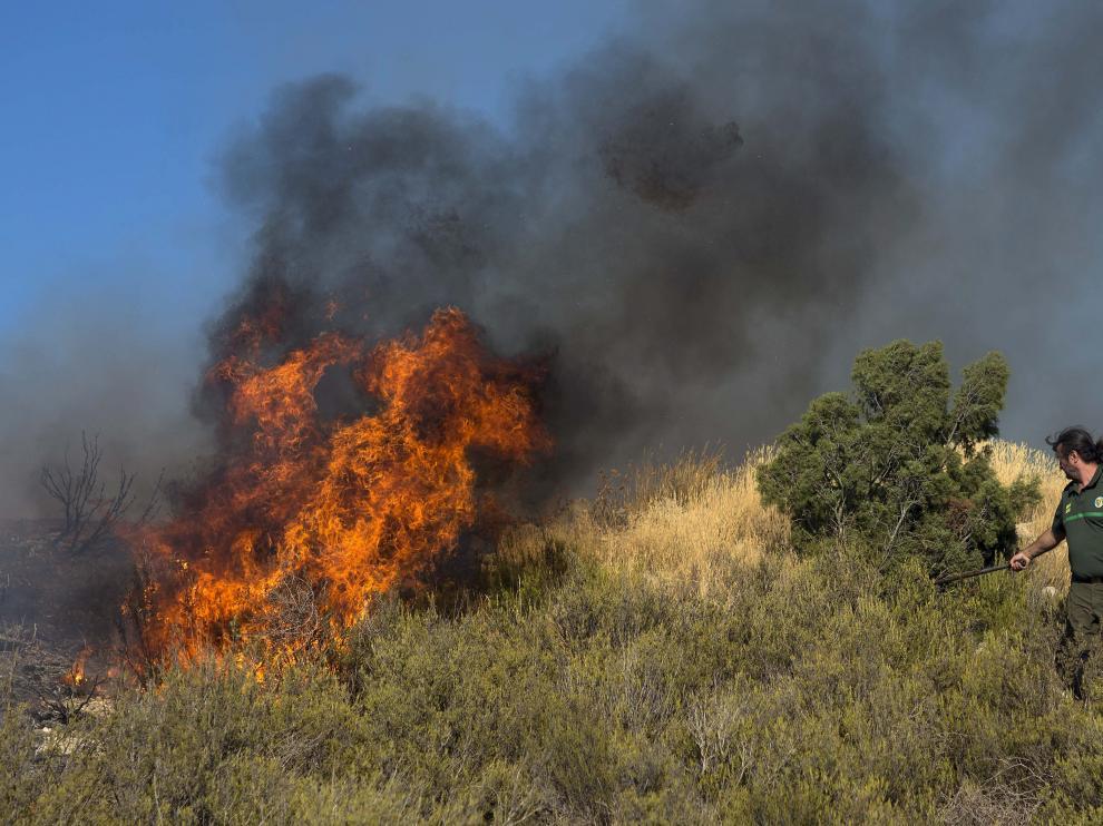La lucha contra el fuego movilizó a muchas personas en los montes de Zuera.