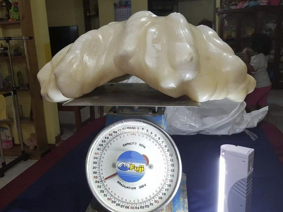 La perla de ostra de 34 kilos encontrada por un pescador filipino en la isla de Palawan.