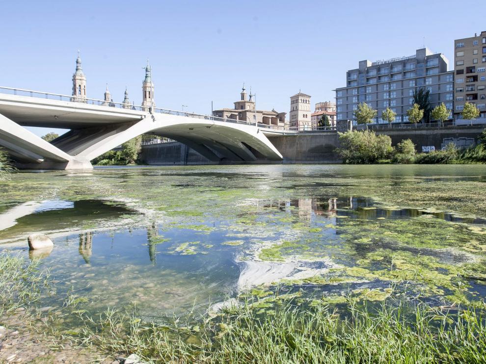 El Ebro a su paso por el Puente de Santiago.