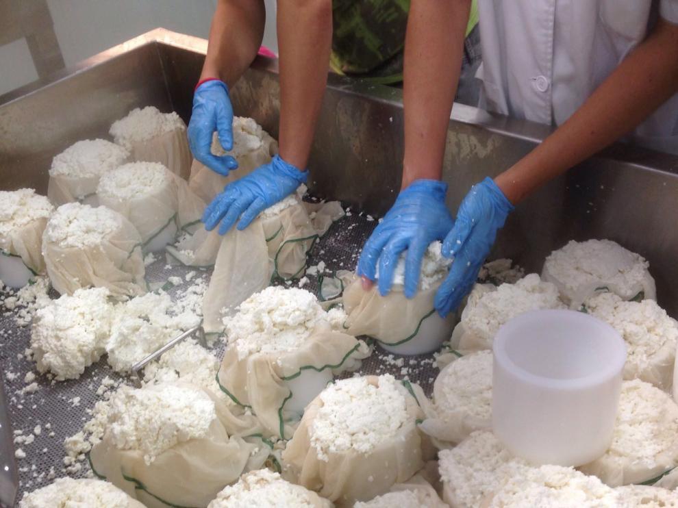 Elaboración del primer queso del vivero de Biescas