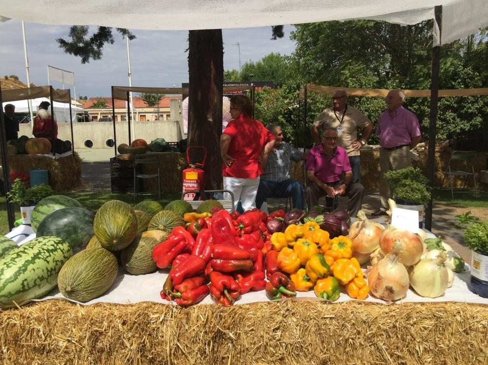 Las hortalizas han disparado sus precios en las últimas semanas