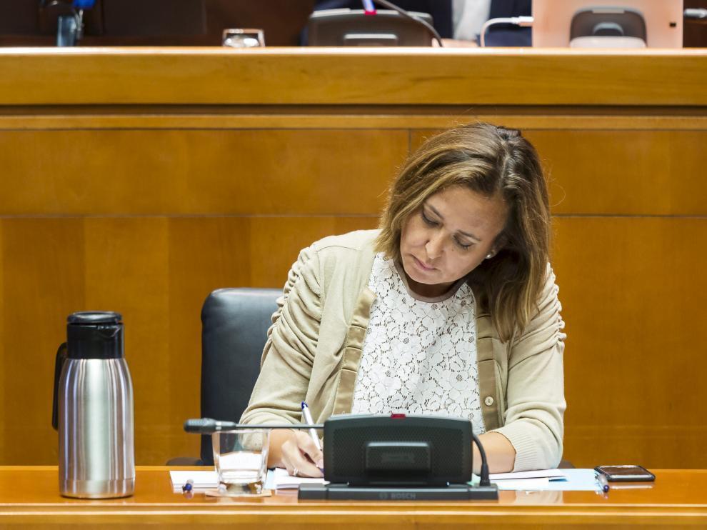 La consejera Mayte Pérez, durante una comparecencia en las Cortes.