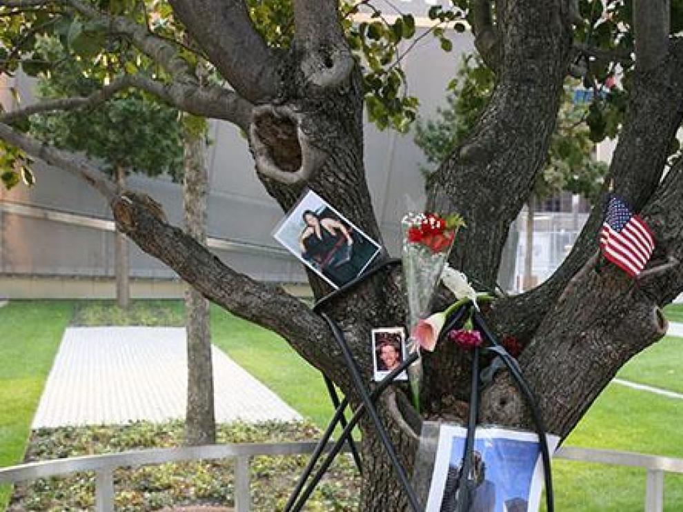 Homenaje a las víctimas en el árbol que sobrevivió al 11-S.