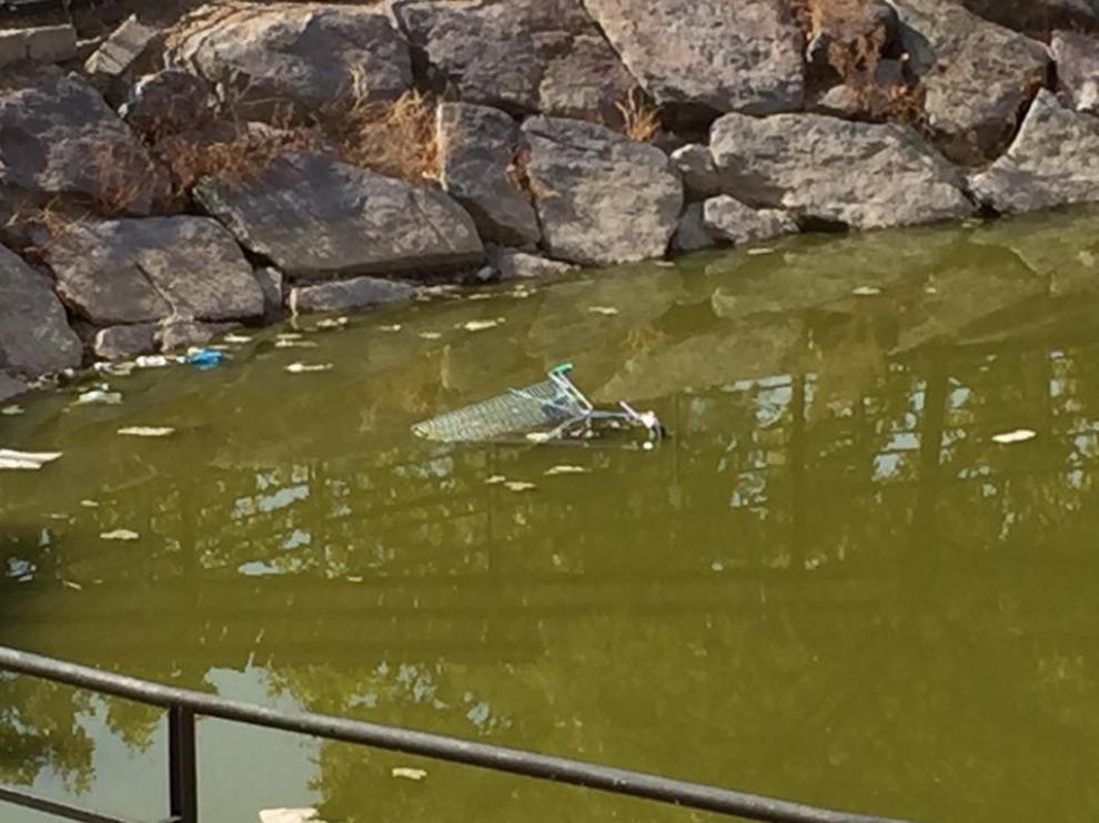Suciedad en el estanque del parque Europa de Utebo.