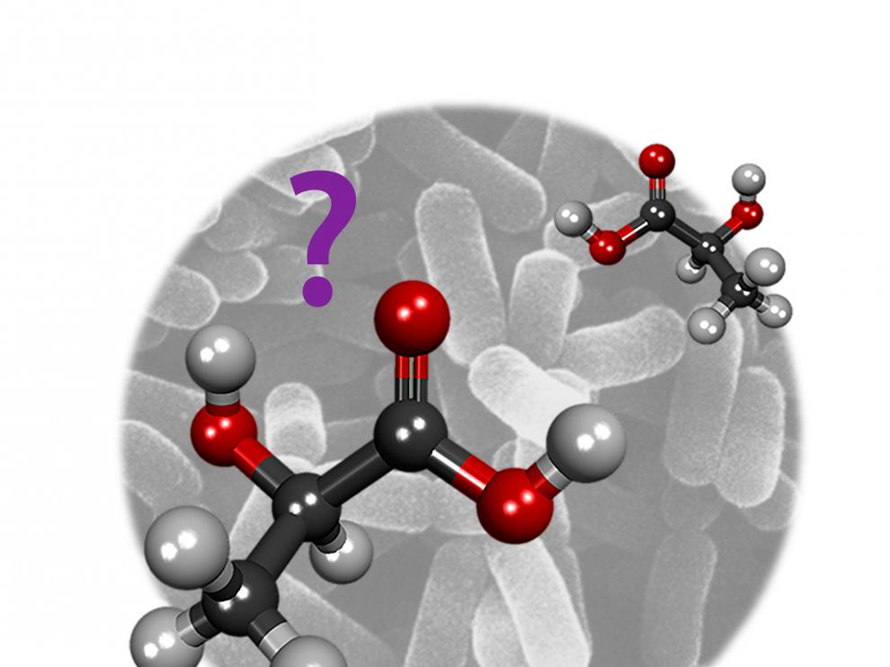 ¿Qué molécula soy?