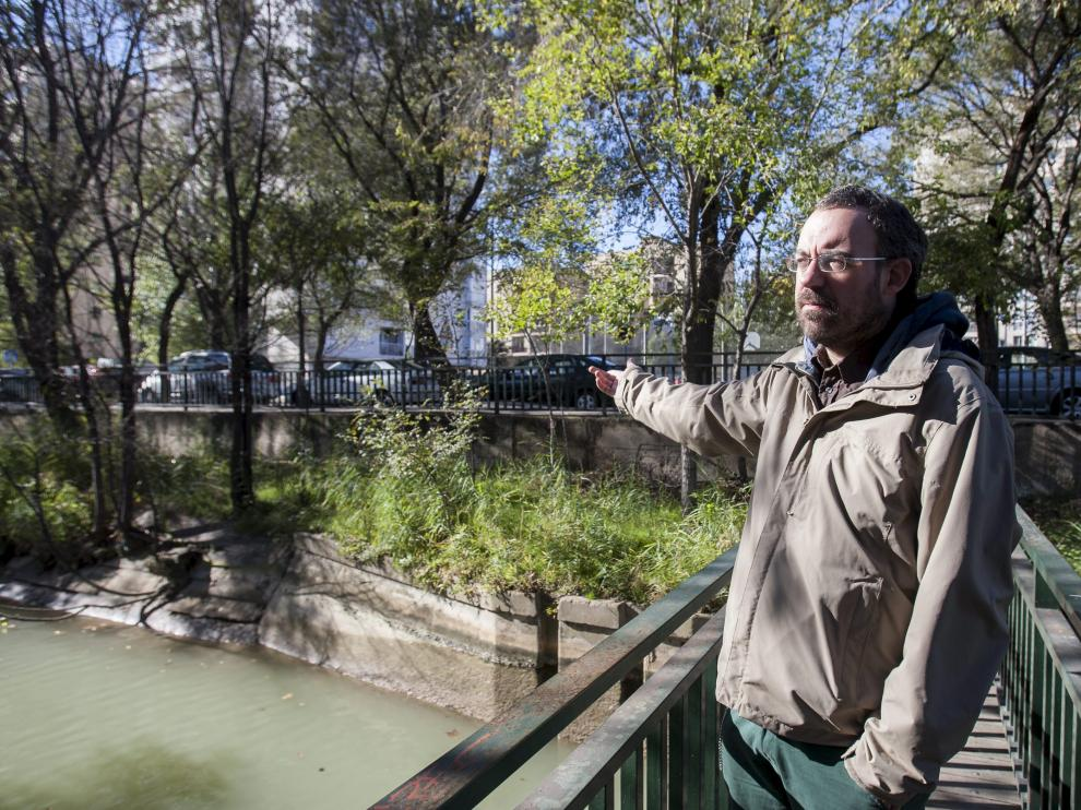 """Nacho Lasmarías, ayer en el tramo del Canal Imperial que precisa una adecuación """"urgente""""."""