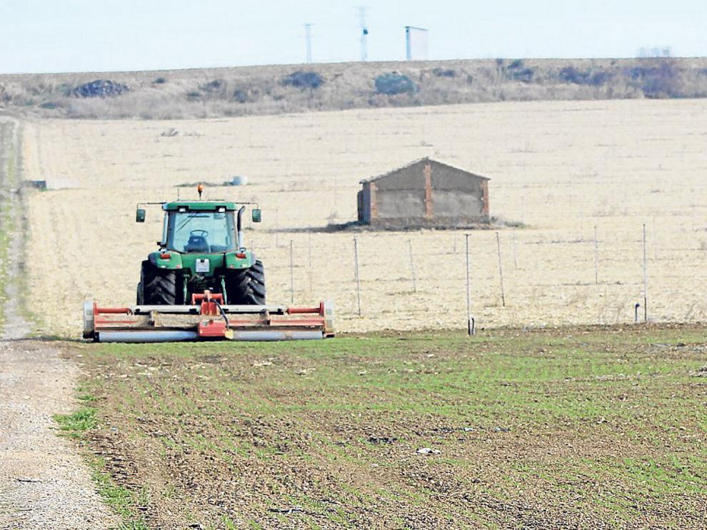 Trabajos de siembra en un campo aragonés.