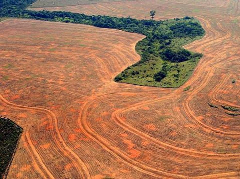 Deforestación en la Amazonía brasileña.