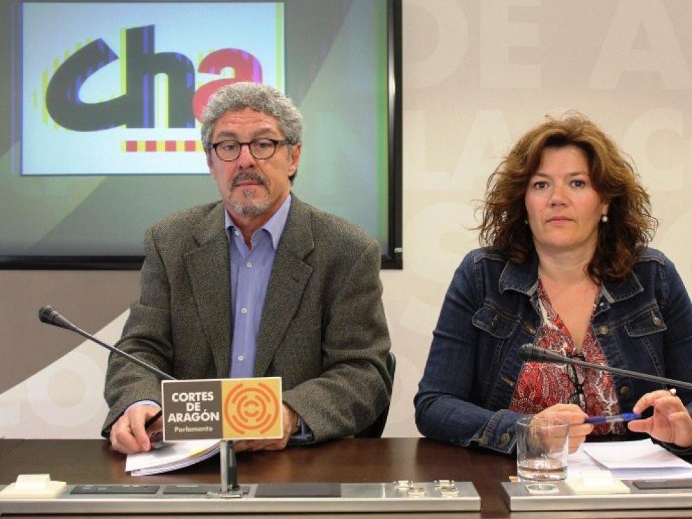 Los diputados de CHA, Gregorio Briz y Carmen Martínez.
