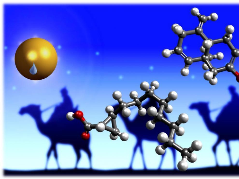 Buscamos dos moléculas muy navideñas: la responsable del aroma del incienso y la responsable del aroma de la mirra