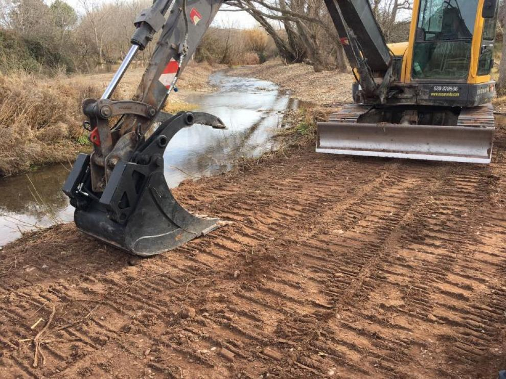 Los trabajos de limpieza en la orilla del Aranda ya han comenzado.