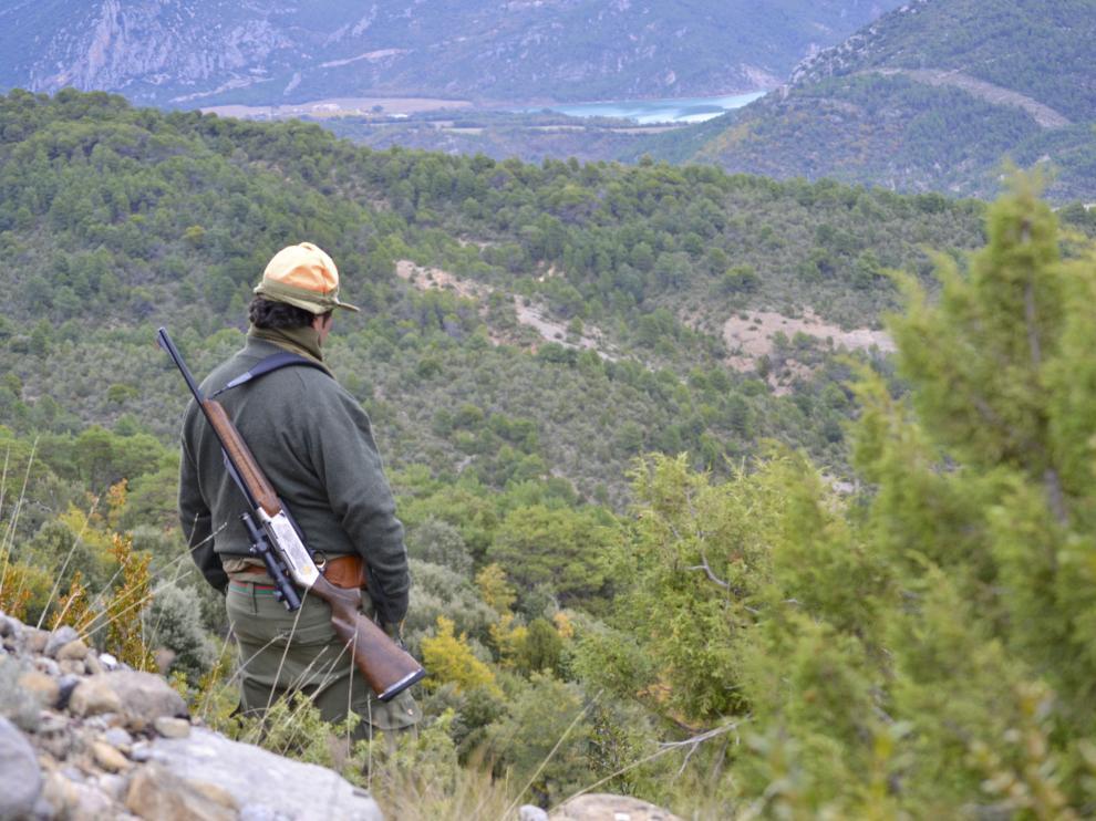 Imagen de archivo de una escena de caza.