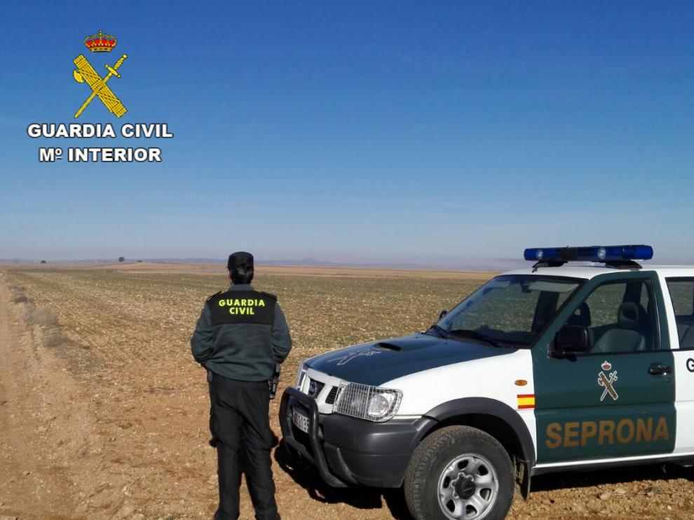 Un agente de la Guardia Civil, durante una intervención en la provincia de Teruel.