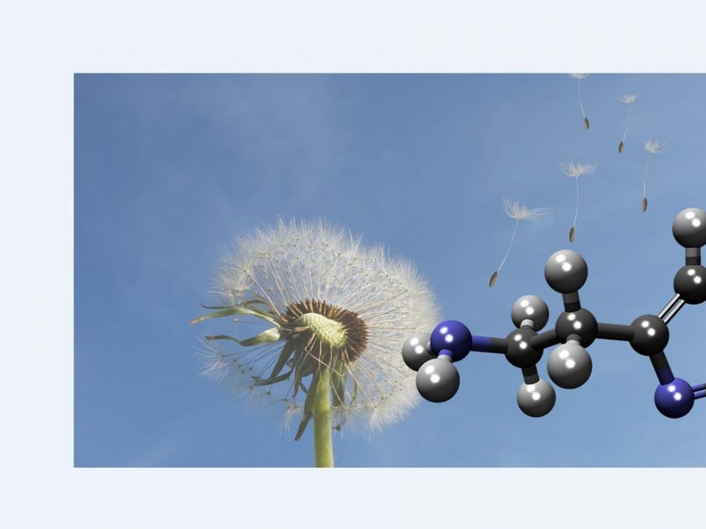 Una molécula muy pequeña actúa cuando nuestro cuerpo se defiende contra los peligros externos