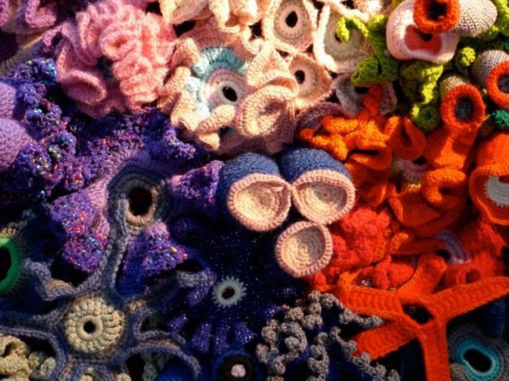 El arrecife de coral tejido permite modelar el espacio hiperbólico