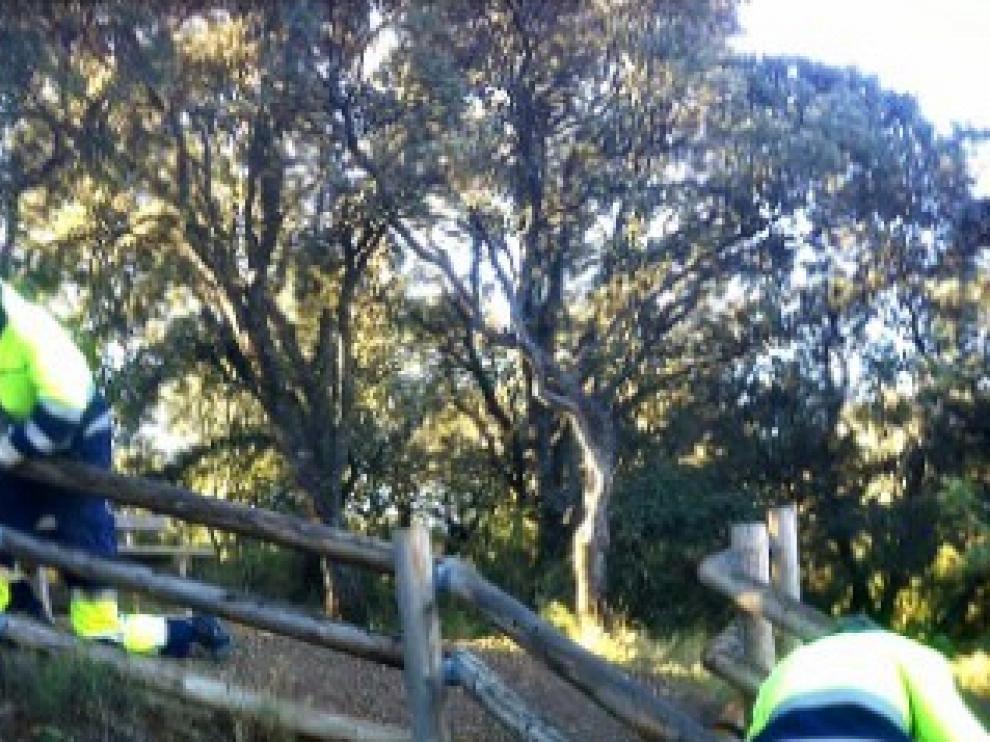 Trabajos de acondicionamiento en varios tramos del Camino Natural del Somontano.