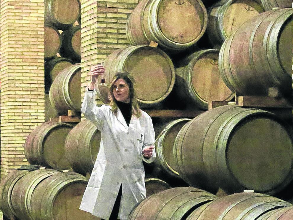 Elena Murillo, técnico de laboratorio de Bodegas Paniza en las instalaciones de la empresa.
