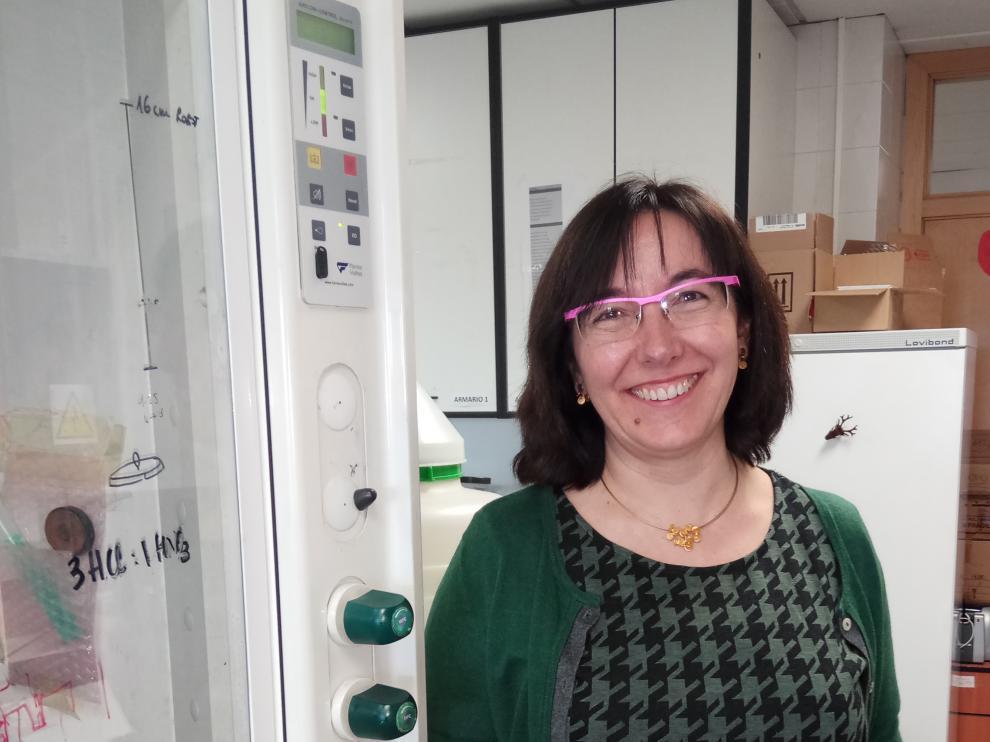 Concepción Gimeno, investigadora del CSIC y la Universidad de Zaragoza.