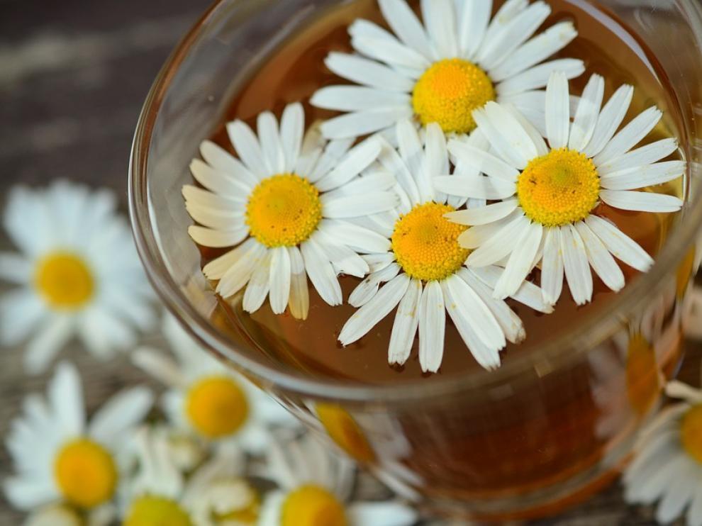 La manzanilla es una planta medicinal de uso muy común.