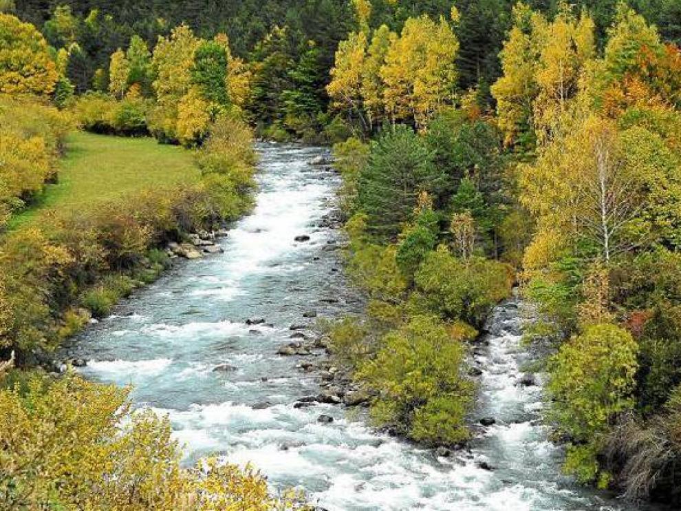 Río del pirineo aragonés