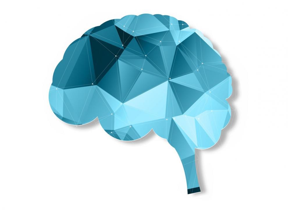 Un estudio de la Universidad de Harvard señala que las actividades que involucran las  emociones y los sentidos son más beneficiosas para el cerebro
