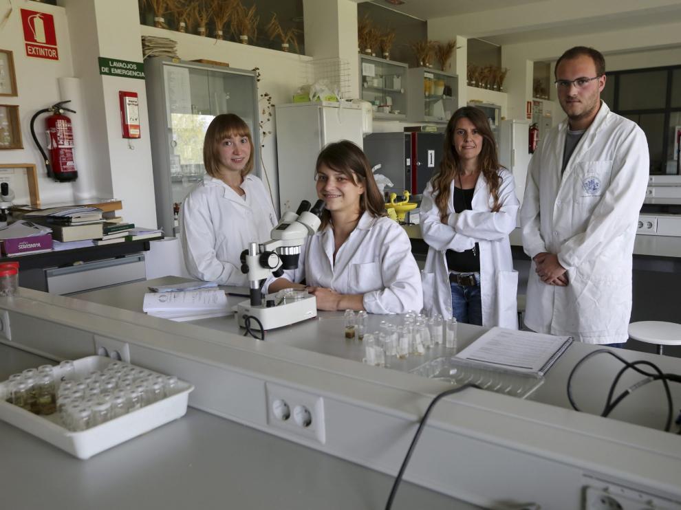 Imagen de archivo sobre la investigación.