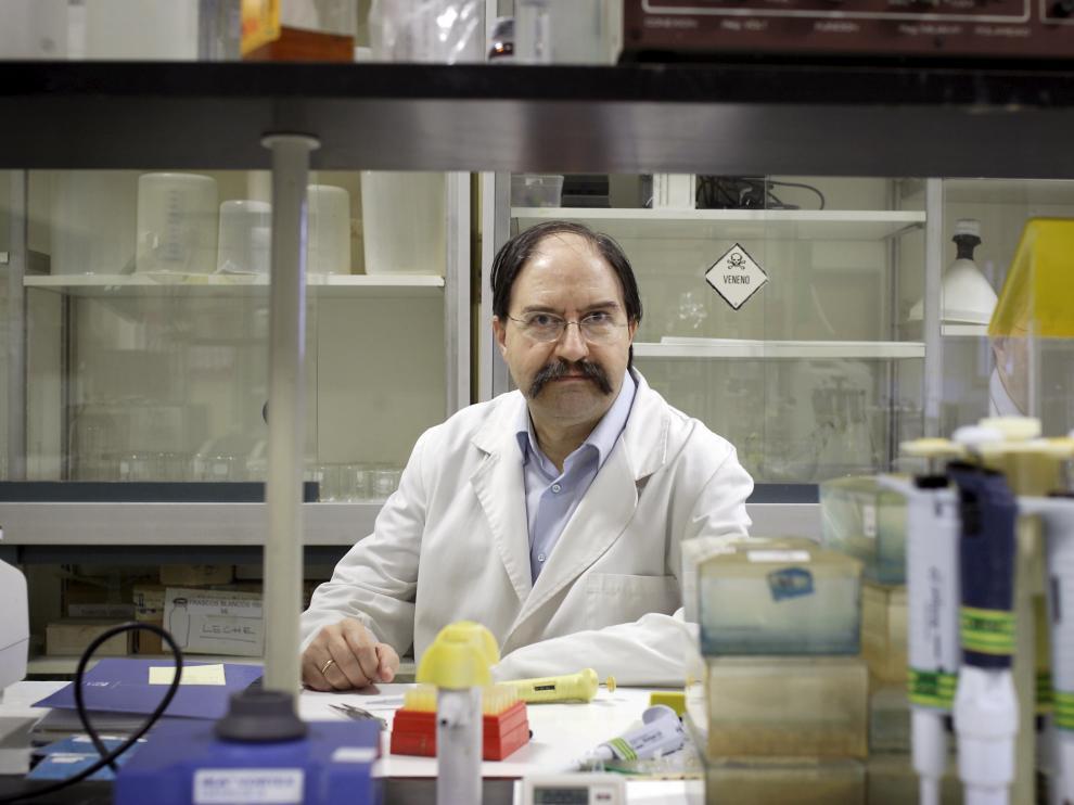 El catedrático de Tecnología de los Alimentos Miguel Calvo, en la Facultad de Veterinaria de la Universidad de Zaragoza.