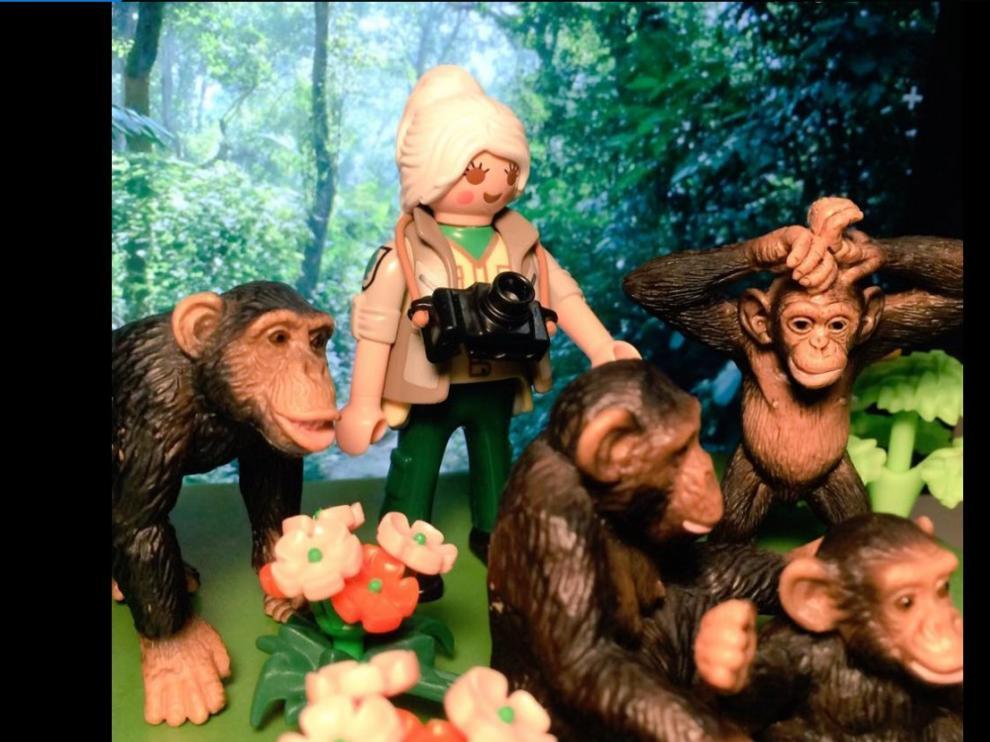 Jane Goodall, de juguete.