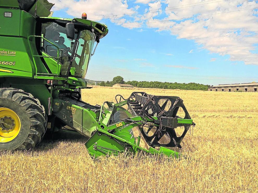 Una cosechadora, ayer en el inicio de la recolección de cereal en campos del sur de la Hoya de Huesca.