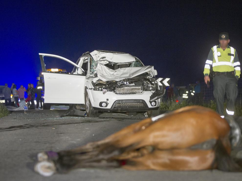 Mueren una mujer  y su caballo al ser atropellados  en Vilalba (Lugo)