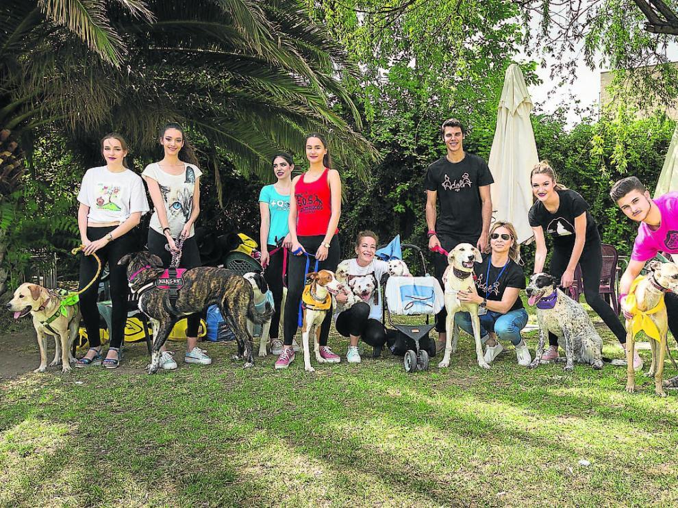 Los perros protagonistas del desfile, junto a los modelos que los acompañaron sobre la pasarela.