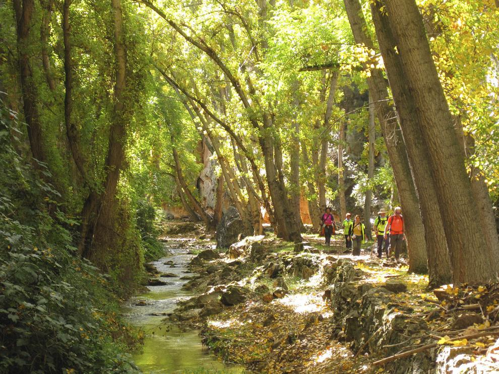 Senderistas junto al río Mesa, entre Calmarza y Jaraba (GR 24).