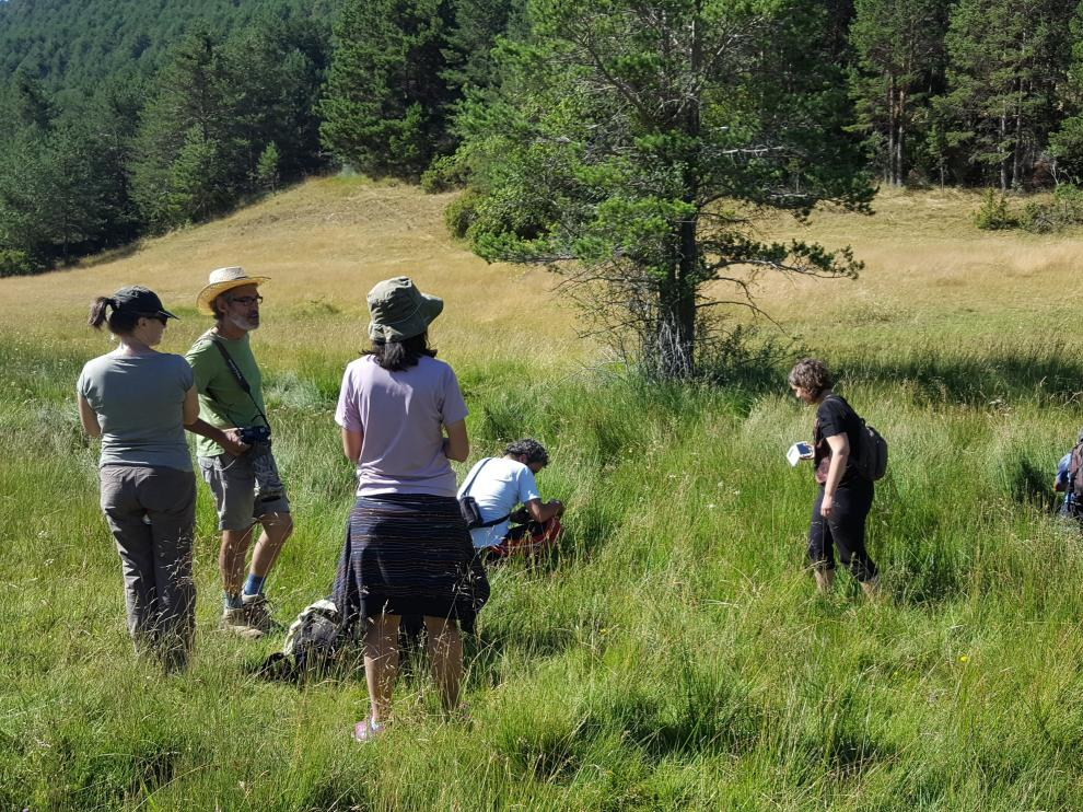 Un grupo de visitantes observa orquídeas en una de las salidas con guía.