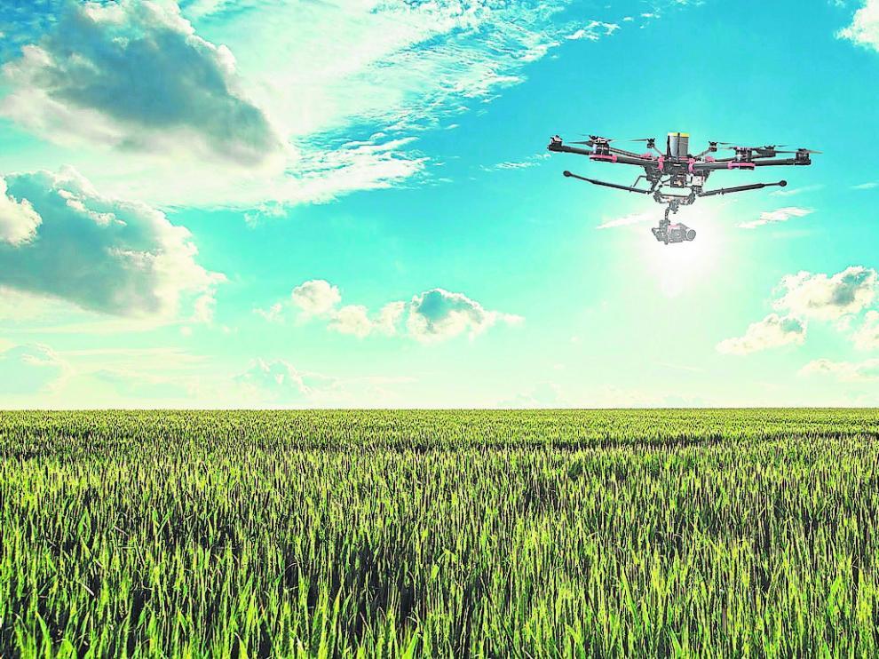 Un dron de la empresa sobrevuela un campo de cereal en las Cinco Villas.