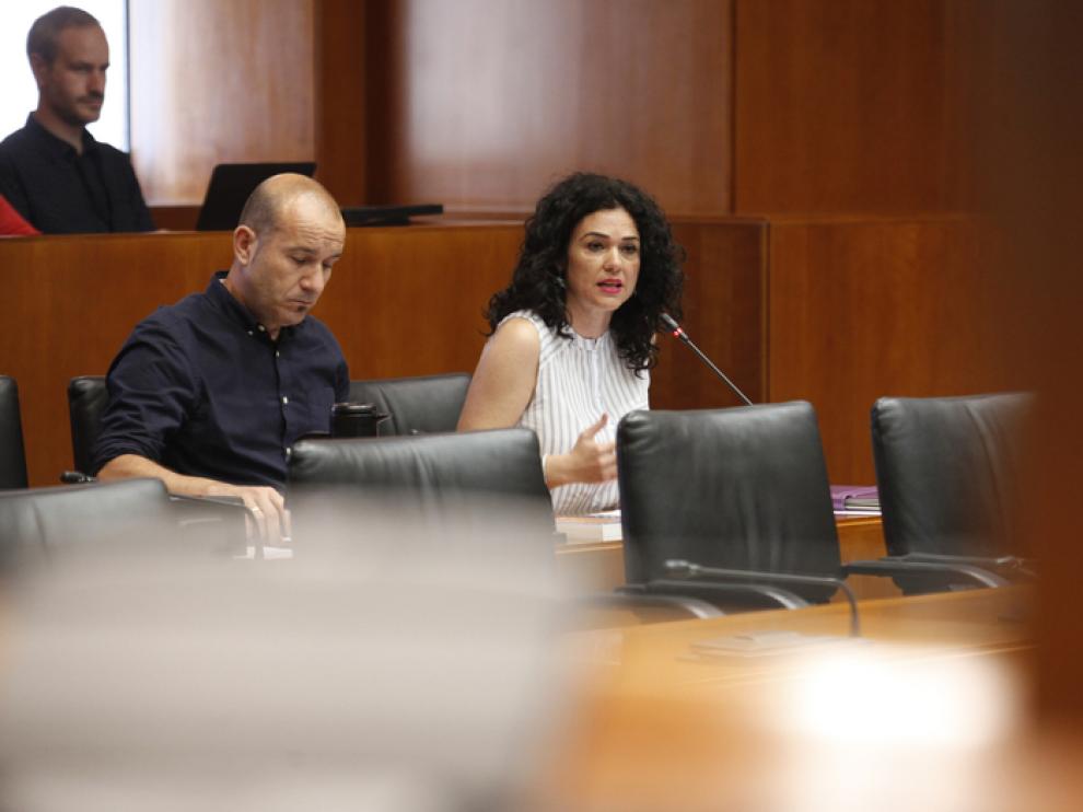 La portavoz de Podemos en la comisión de educación, Erika Sanz.