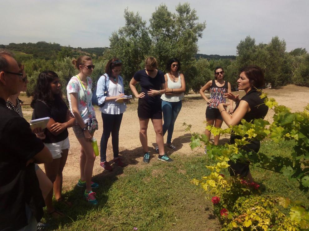 Los estudiantes durante su visita a bodega Blecua de Viñas del Vero.