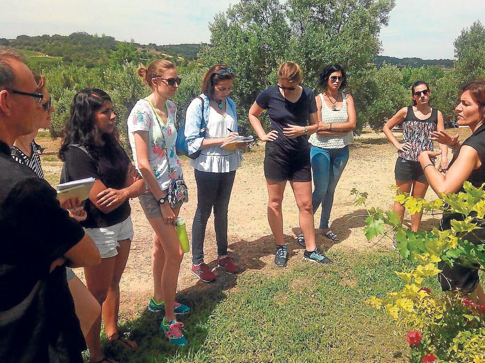 Los estudiantes visitaron las instalaciones de la bodega Blecua donde se les explicó la elaboración artesanal de su vino.